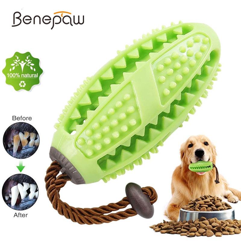 Mordedor Brinquedo Escova de Dente para seu Pet – Benepaw – Higiente dental com diversão!